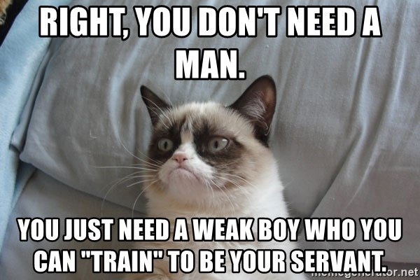 "Grumpy cat good - Right, you dOn't Need a man. You just nEed a weak boy who you can ""train"" to be your servant."