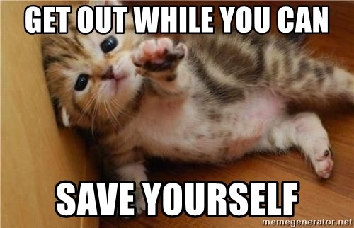 43529692 get out while you can save yourself fallen kitten meme generator