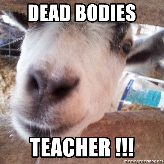 Animals with song quotes - dead bodies  teacher !!!