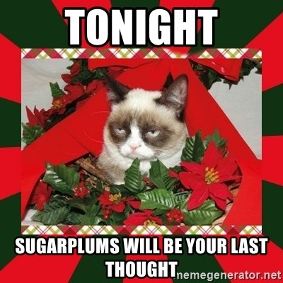 GRUMPY CAT ON CHRISTMAS - tonight sugarplums will be your last thought