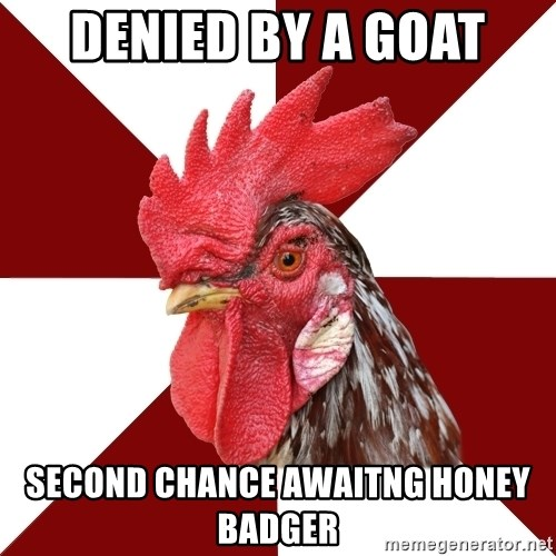 Roleplaying Rooster - denied by a goat second chance awaitng honey badger