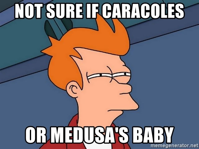 Futurama Fry - Not sure if caracoles or medusa's baby