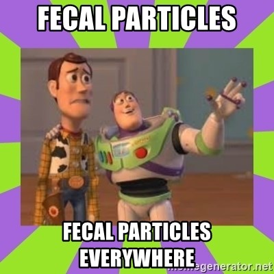 X, X Everywhere  - Fecal Particles Fecal particles everywhere