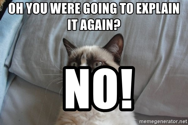 Grumpy cat 5 - Oh YOU were going to explain it again?  no!