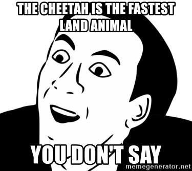 nicholas cage you dont say - the cheetah is the fastest land animal you don't say