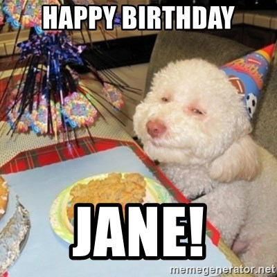 Birthday dog - happy birthday jane!