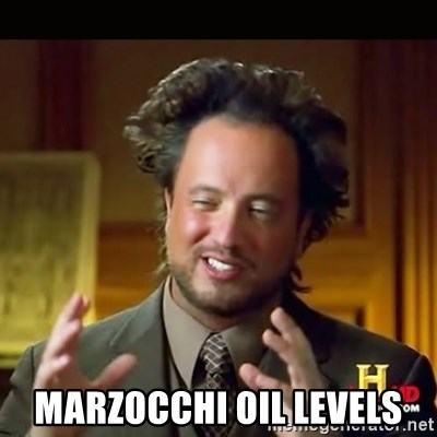History guy -  Marzocchi oil levels