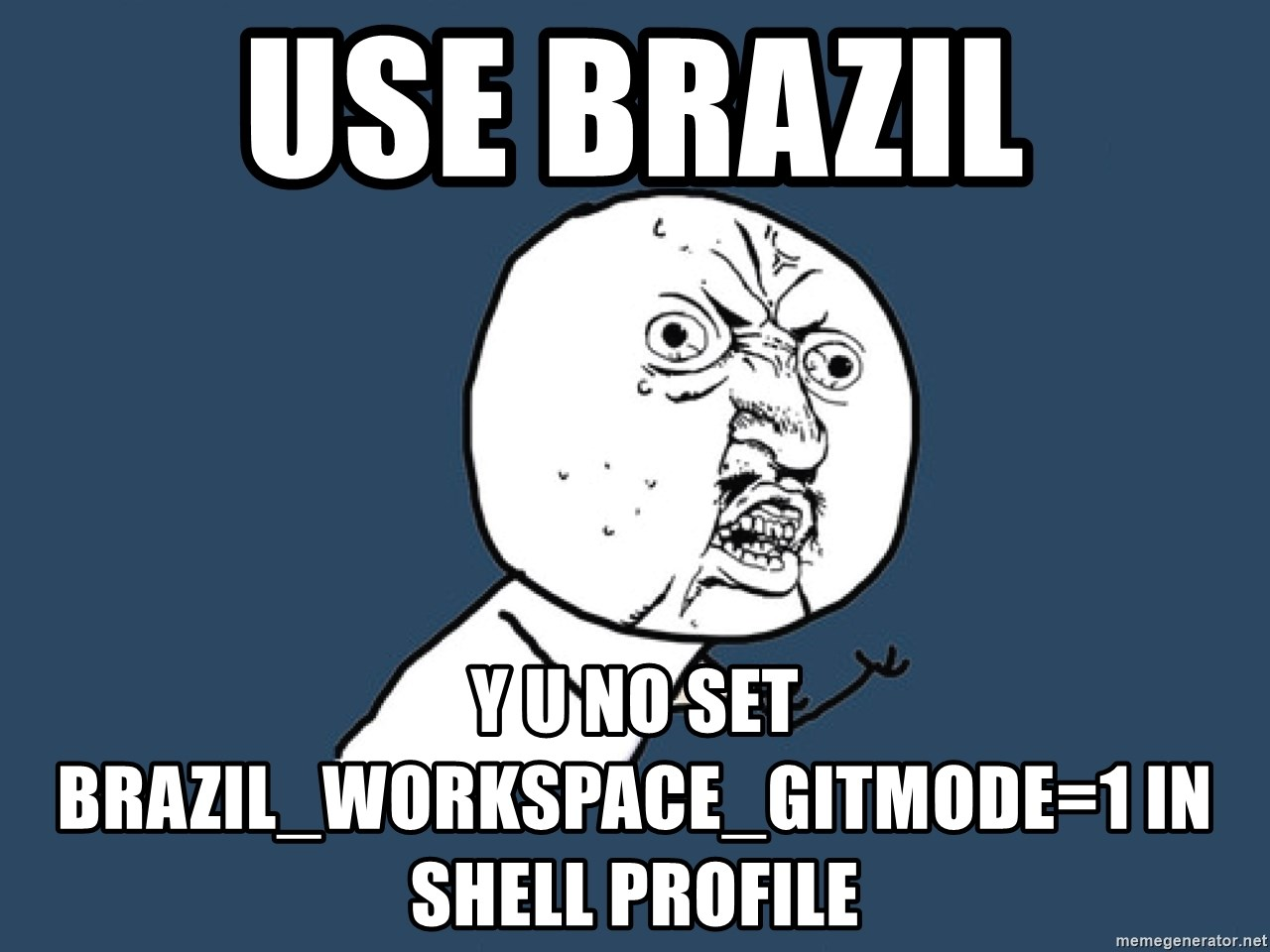 Y U No - use brazil Y u no set BRAZIL_WORKSPACE_GITMODE=1 in shell profile