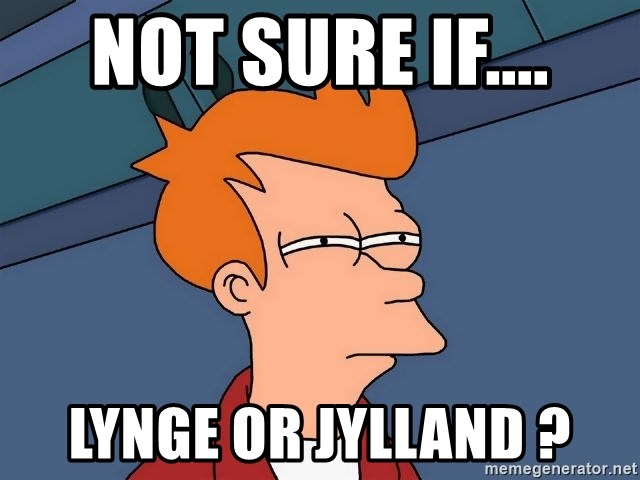 Futurama Fry - not sure if.... lynge or jylland ?