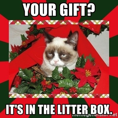 GRUMPY CAT ON CHRISTMAS - your gift? It's in the litter box.