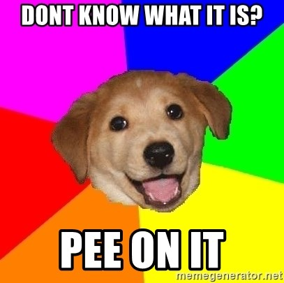 Advice Dog - dont know what it is? pee on it