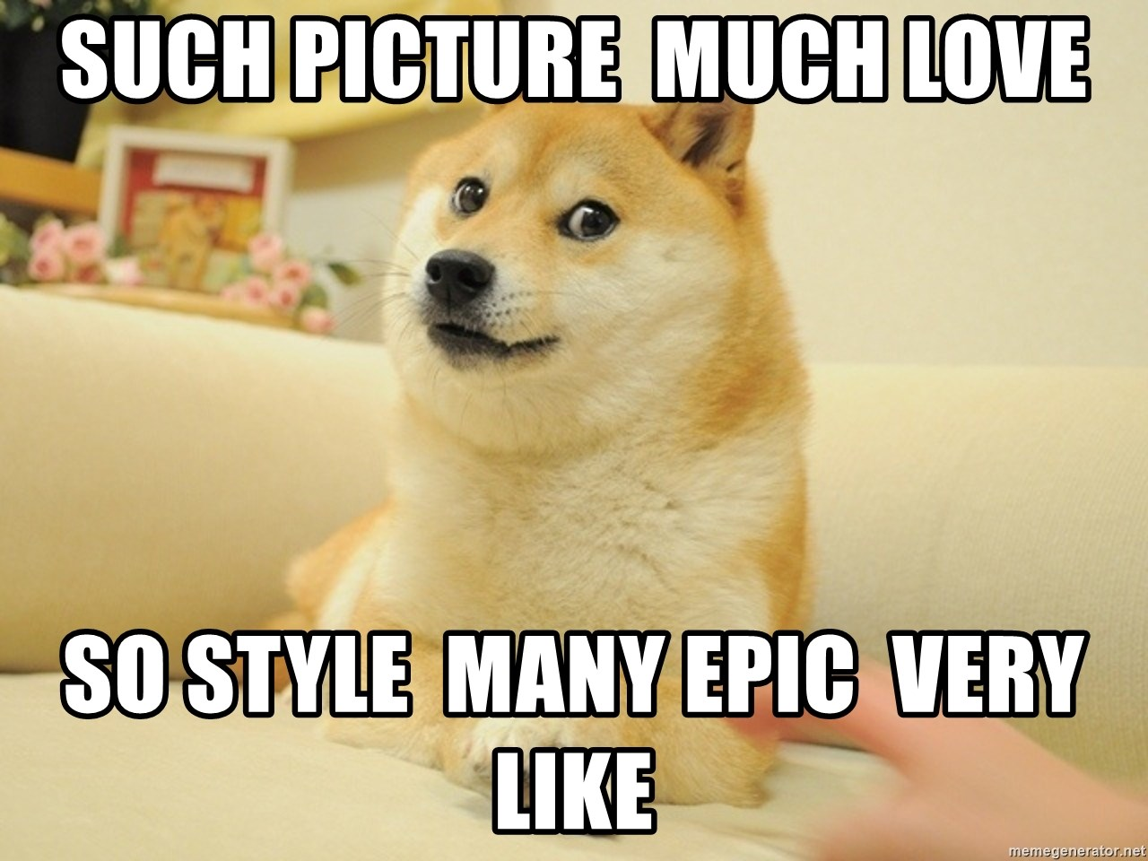so doge - Such picture  much love so style  many epic  very like