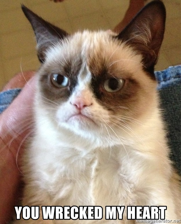 Grumpy Cat Face -  you wrecked my heart