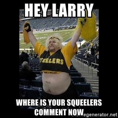 Dumb Steelers Fan - Hey Larry where is your squeelers comment now