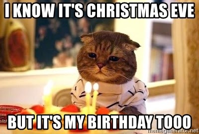 Birthday Cat - i know it's christmas eve but it's my birthday tooo