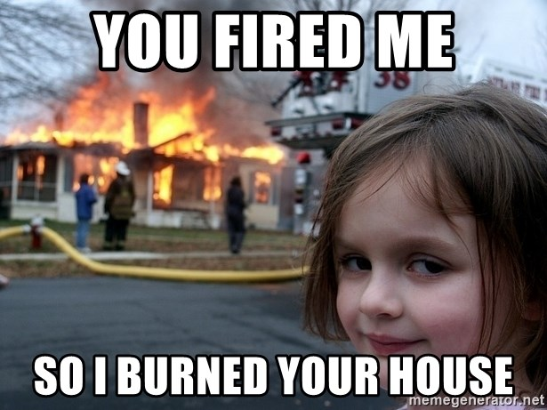 Disaster Girl - You fired me So i burned your house