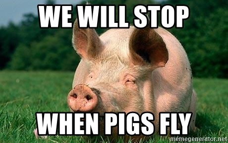 We Will Stop When Pigs Fly Funny Until Pigs Fly Meme Generator