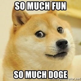 Dogeeeee - so much fun so much doge