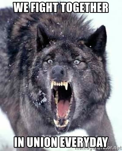 Angry Ass Wolf - we fight together in union everyday