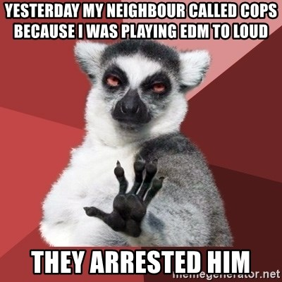 Chill Out Lemur - Yesterday my neighbour called cops because i was playing EDM to loud  They arrested him