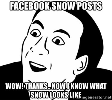 nicholas cage you dont say - facebook snow posts wow! thanks.. now i know what snow looks like