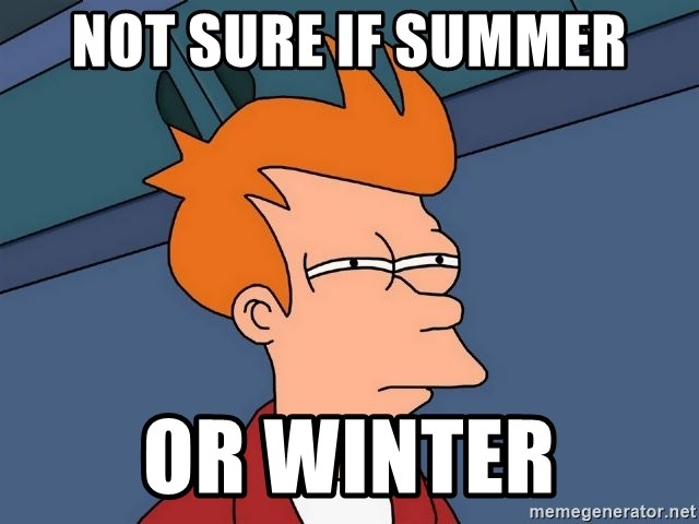 Futurama Fry - Not sure if suMmer or winter