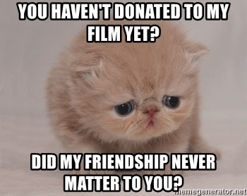 Super Sad Cat - You haven't donated to my film yet? Did my friendship never matter to you?