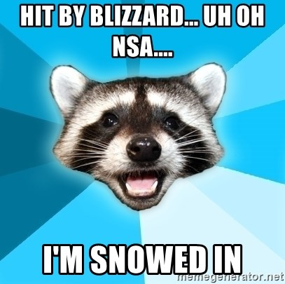 Lame Pun Coon - Hit by blizzard... uh oh nsa.... I'm snowed in