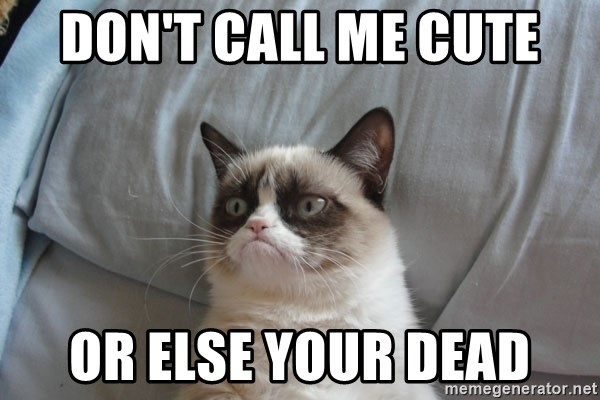 Grumpy cat good - DON'T CALL ME CUTE OR ELSE YOUR DEAD