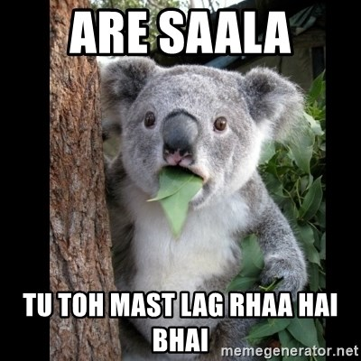 Koala can't believe it - are saala  tu toh mast lag rhaa hai bhai