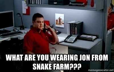 Jake From State Farm - what are you wearing jon from Snake farm???