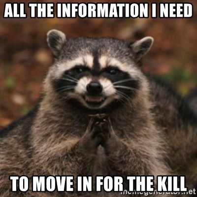 evil raccoon - all the information I need to move in for the kill