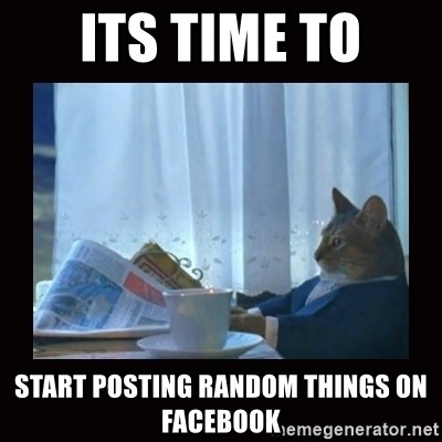 i should buy a boat cat - its time to start posting random things on facebook