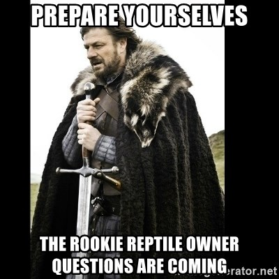 Prepare Yourself Meme - Prepare yoURSELVES THE ROOKIE REPTILE OWNER QUESTIONS ARE COMING