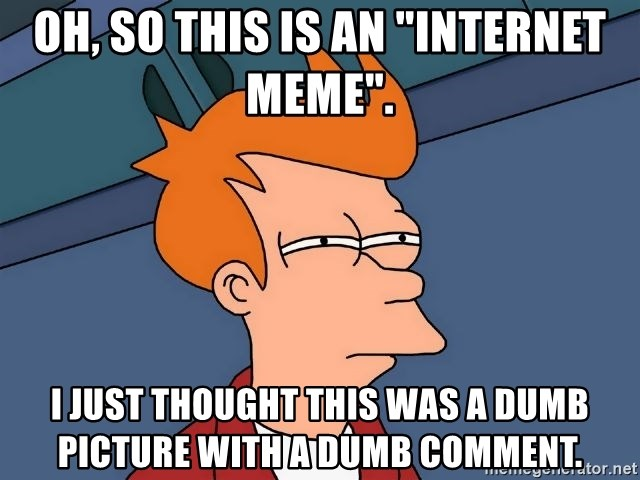 """Futurama Fry - Oh, so THIS is an """"Internet Meme"""". I just thought this was a dumb picture with a dumb comment."""