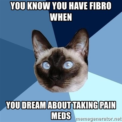 Chronic Illness Cat - You know you have fibro when  You dream about taking pain meds