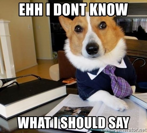 Dog Lawyer - ehh I DONT KNOW  what i should say