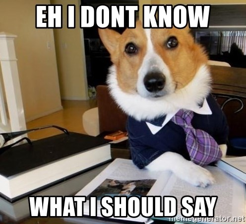 Dog Lawyer - eh i dont know what i should say