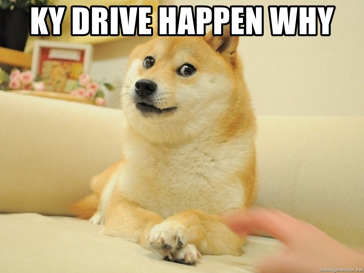 so doge - KY drive happen why
