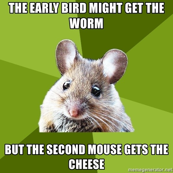 Prospective Museum Professional Mouse - the early bird might get the worm but the second mouse gets the cheese