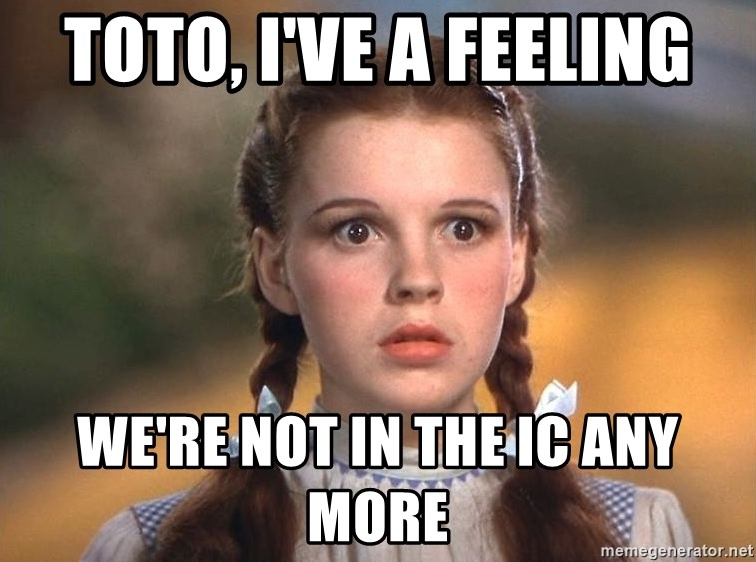 Toto Ive Feeling Were Not In >> Toto I Ve A Feeling We Re Not In The Ic Any More Dorothy