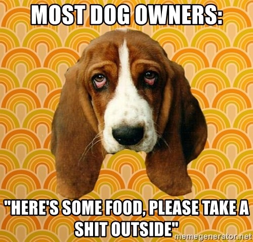 """SAD DOG - Most Dog Owners: """"Here's some food, please take a shit outside"""""""