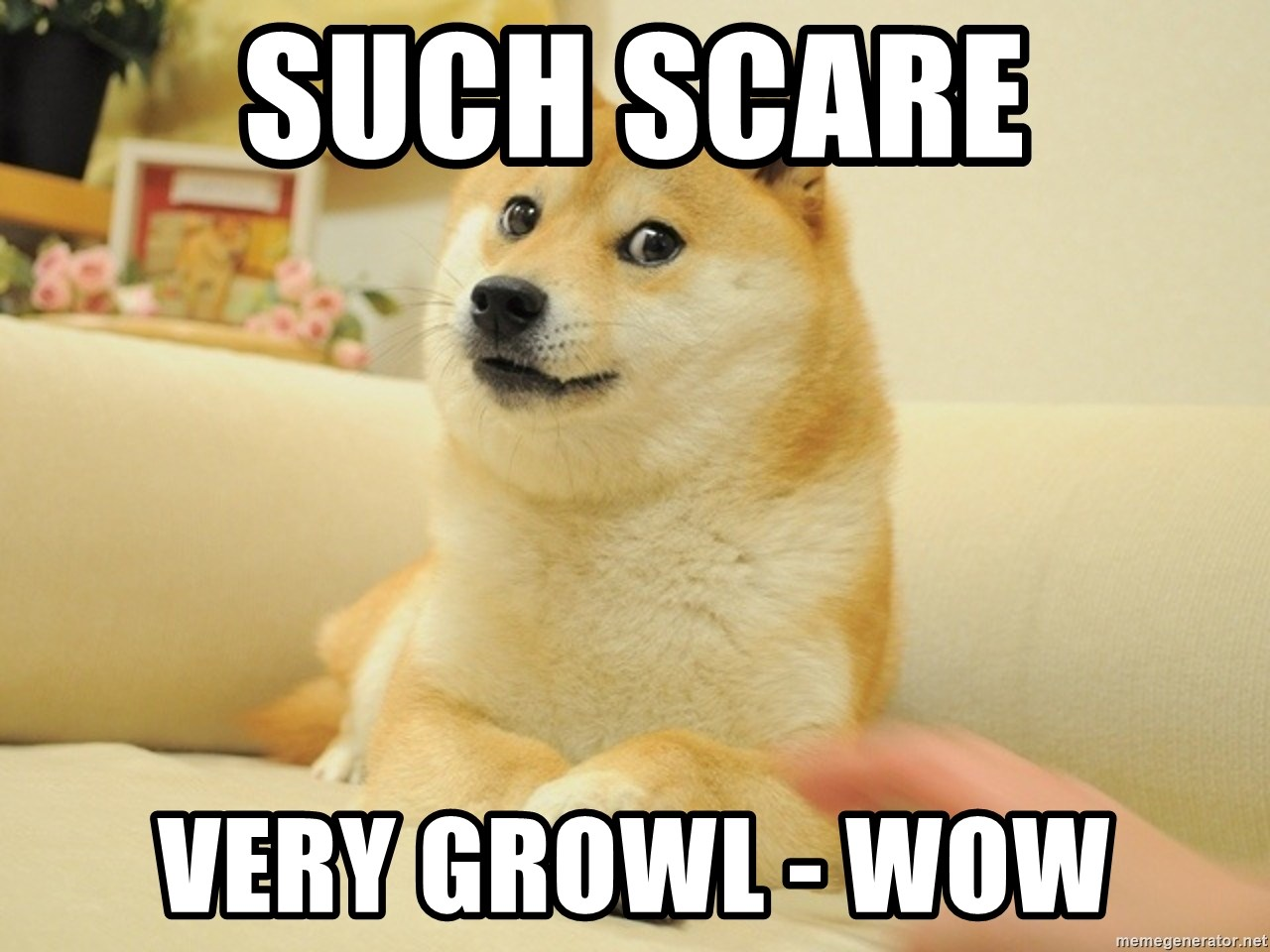 so doge - Such scare very growl - wow