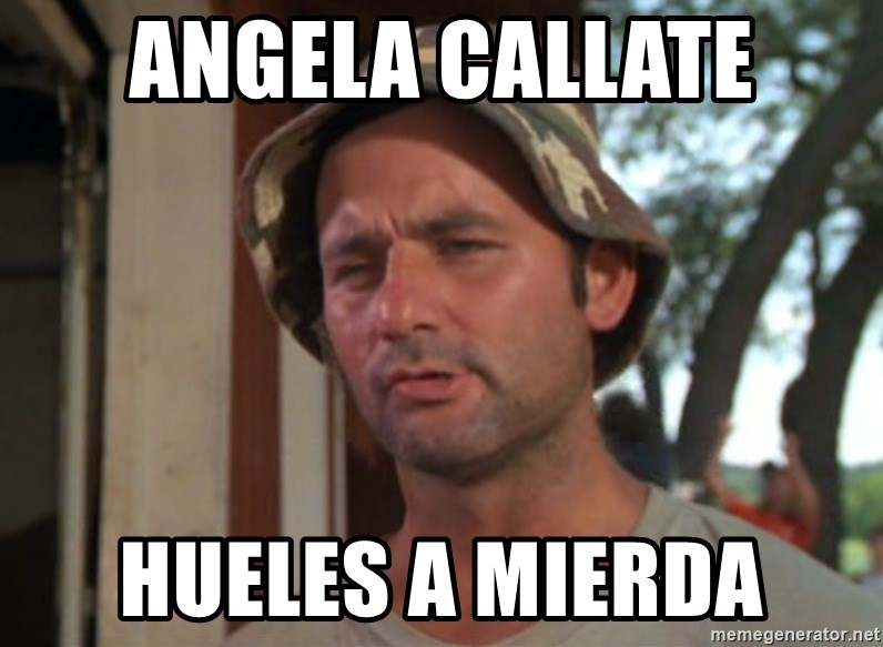 So I got that going on for me, which is nice - angela callate hueles a mierda