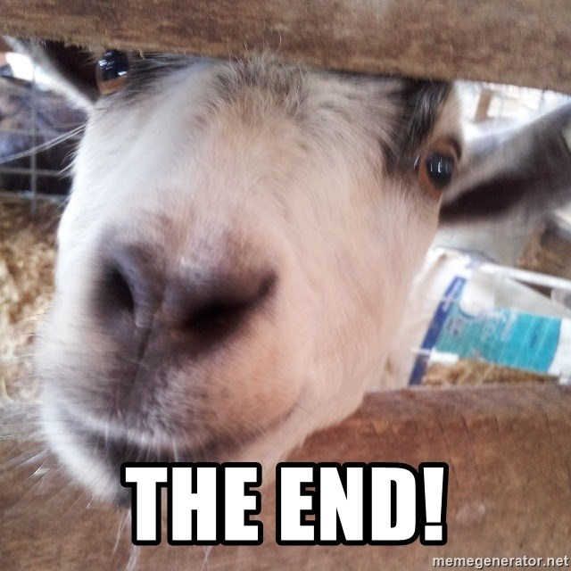 Animals with song quotes - The End!