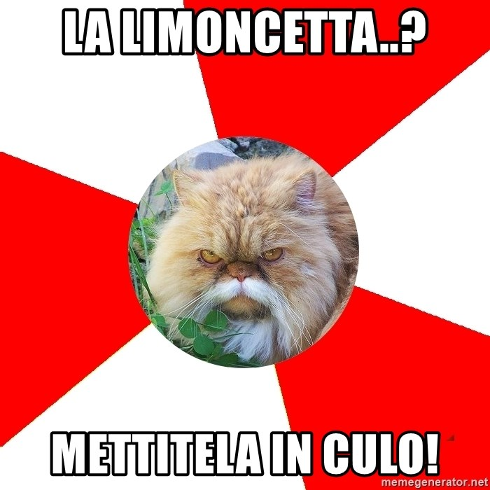 Diabetic Cat - la limoncetta..? mettitela in culo!