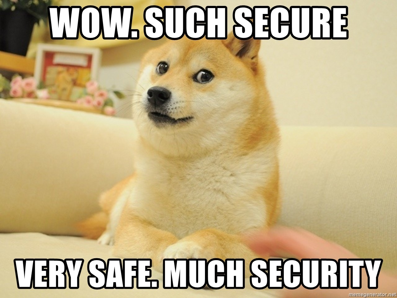 so doge - WOW. SUCH SECURE VERY SAFE. MUCH SECURITY