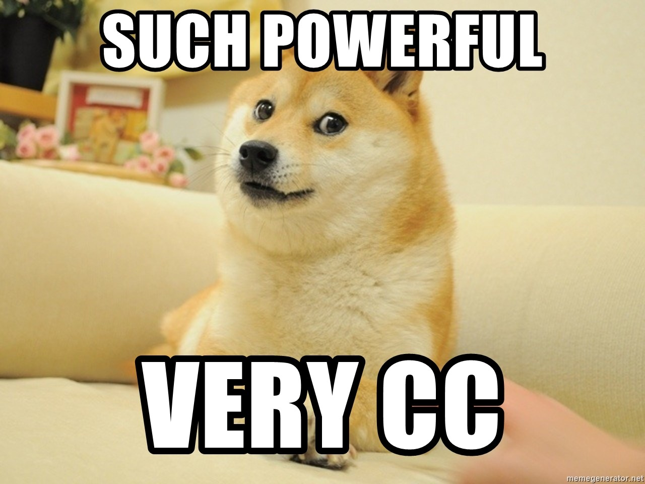 so doge - SUCH powerful very cc