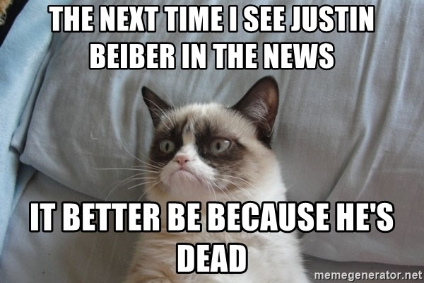 Grumpy cat good - the next time i see justin beiber in the news it better be because he's dead