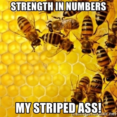Honeybees - strength in numbers my striped ass!